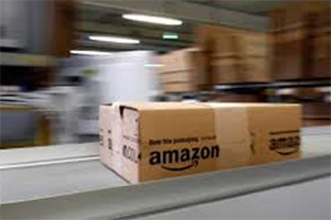Amazon India, ecommerce