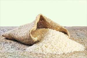 rice, Levy rice, Levy rice dispense, Levy rice govt, Levy rice government, Levy rice october, fci