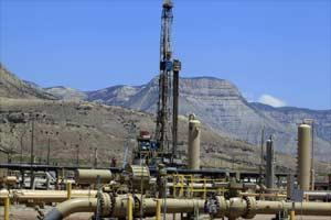 Natural gas, gas price, India gas price