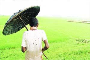land acquisition, land acquisition act, land acquisition ordinance, bjp, TMC, mamata banerjee, Congress