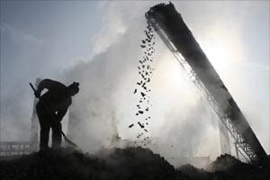 Coal India shares, sensex