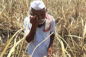 maharashtra drought