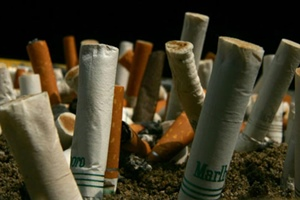 tobacco sector