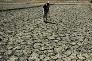 West bengal drought, drought crisis, Ministry of agriculture, Subrata Mukherjee