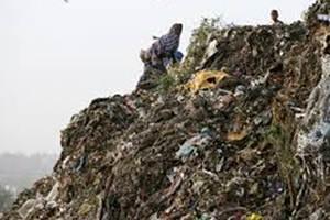 Qutub Minar Delhi, Delhi heritage monuments, Delhi garbage, Okhla, Gazipur