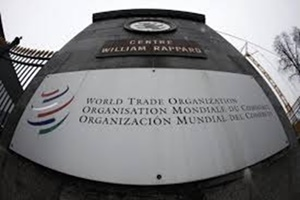 Some developed nations, especially the US, have been vigorously pushing for the inclusion of new topics such as e-commerce and government procurement for negotiations at the WTO. (Reuters)