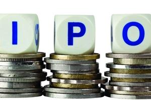 Endurance Technologies IPO