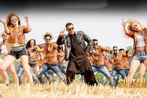 Sultan first day collection, sultan first day collection expected, sultan 1st day collection, sultan salman khan, sultan 1st day collection prediction, salman khan, salman khan sultan, sultan first day collection worldwide