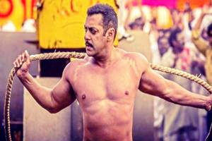 Sultan, Sultan box office, Sultan collections, Sultan box office collections, sultan collection, sultan collection till now, sultan collection 6th day, salman khan sultan, salman khan twitter, salman khan news