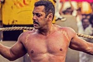 Sultan, sultan collection, Sultan opening weekend collections, sultan collection till now, sultan collection worldwide, sultan collection expected, salman khan, salman khan sultan, sultan salman khan, sultan collection report, Sultan box office, Sultan box office collections, sultan collection prediction, box office collections, bollywood, entertainment