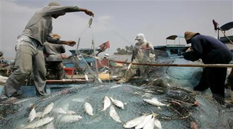 The state has carved out 810 large water bodies for fisheries, for which Rs 23 crore have been spent on providing fish food. (Reuters)