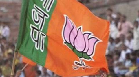 The panel will primarily plan and execute campaign strategies, handle distribution of poll material and organise public rallies and meetings with workers, BJP said in a communication today.  (PTI)