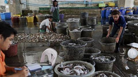 fisheries sector, West Bengal, fish production, fish exports, fish processing, ational Fisheries Development Board