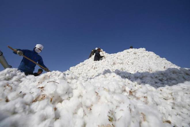 Cotton,high prices, China floods,excess supply,strategic inventory,Global output,stockpiles,stockpiles of cotton