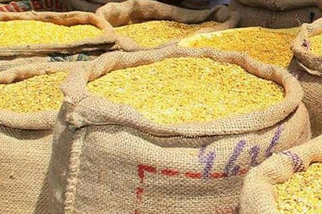 rabi crop, rabi crop in India, agriculture, rabi markets, Nafed, rabi procurement, foodgrain production, kharif pulses, MSP