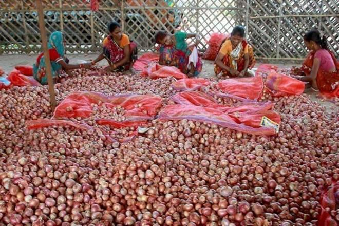 Maharashtra government, MEIS extension, Merchandise Exports from India, onion exports, Jaydutt Holkar, MEIS benefits, Devendra Fadnavis