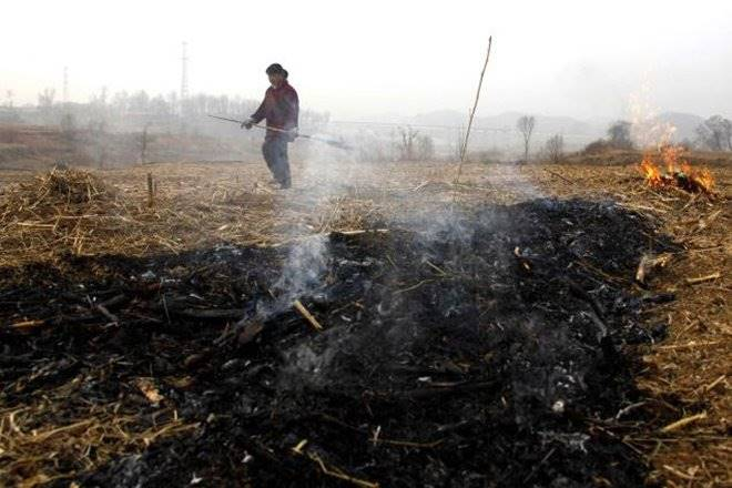 pollution, crop residue, agriculture, agriculture india, farmers, crop residue burning