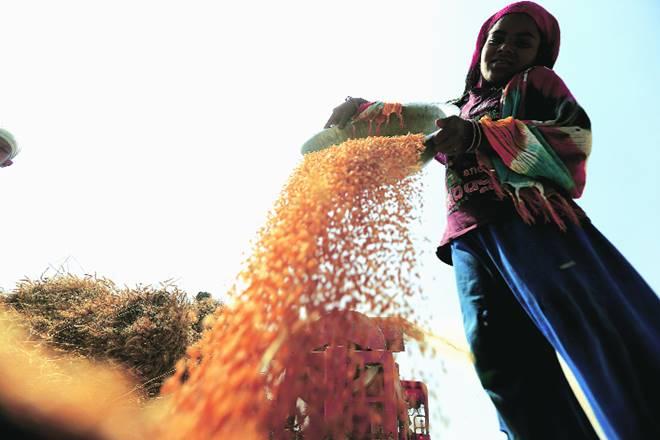 P Chidambaram, farm, farmers, Uttar Pradesh