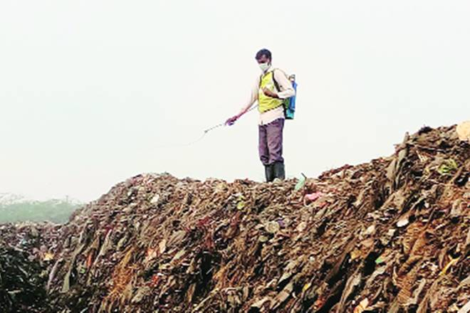 Garbage in cities, Garbage in india, Garbage, Municipal Solid Waste, National Green Tribunal, Municipal Solid Waste Rules, Solid Waste Management Rules, Mindspace Commercial Complex, bioremediation, Faridabad Municipal Corporation