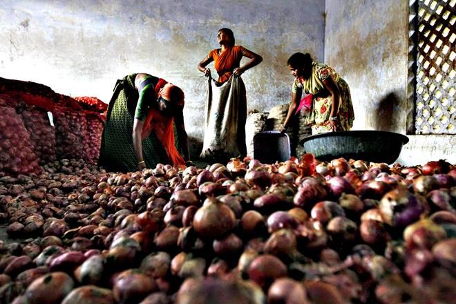 Gujarat onion farmers, potato farmers, farmers crisis in india, onion falling prices