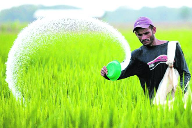 pesticide, pesticide companies, pesticide companies registration, farmers, crop prduction