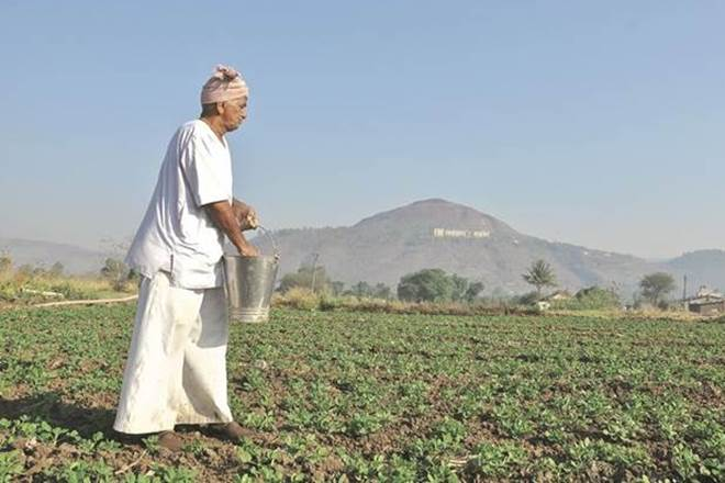 farm loam, financial express editorial, Arvind Subramanian, msp, minimum support price