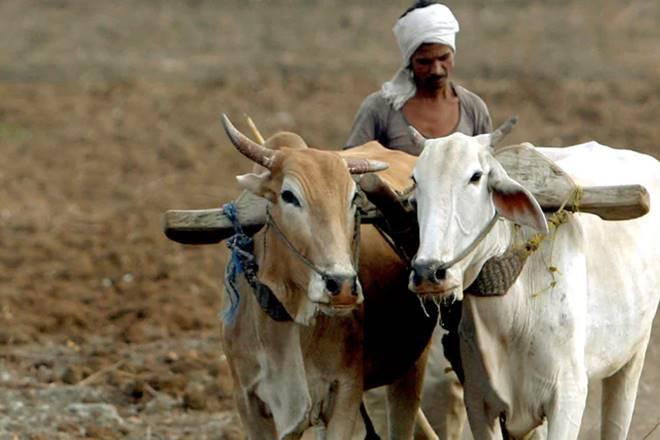 yogi adityanath, uttar pradesh government, uttar pradesh farmers, farmers, farmers uttar pradesh, farm loan waiver