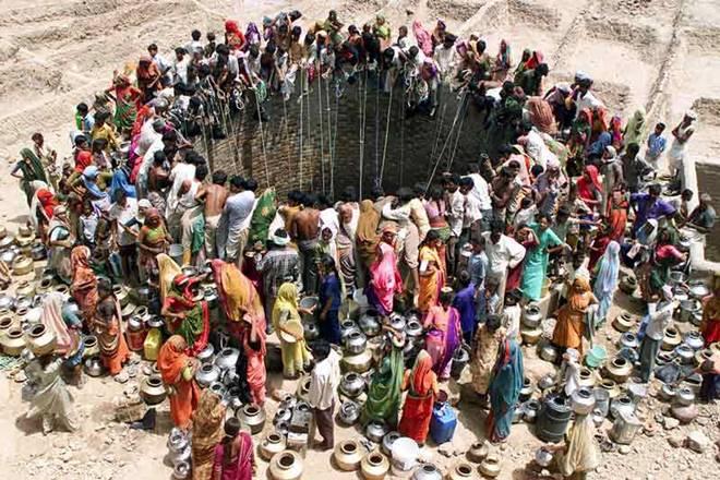 Gujarat village, Gujarat, sewage water auction, sewage water, water auction, Bansankhtha district, Bansankhtha Gujarat, Bansankhtha, Kanodar, Kanodar Gujarat, Kanodar village, farmers, farming practice