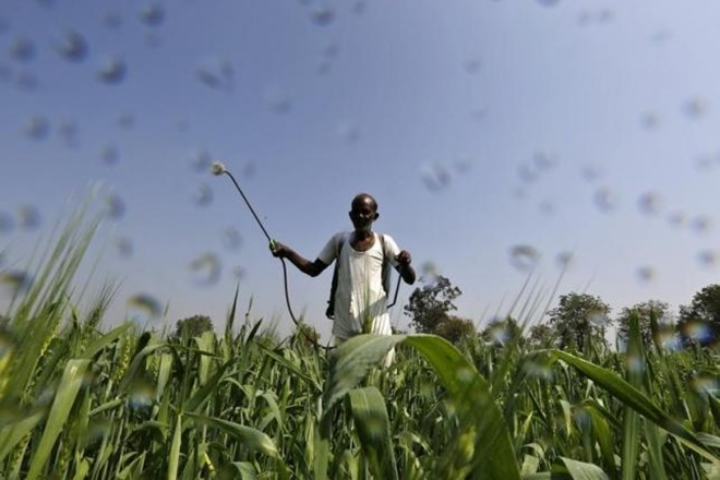 Crop insurance schemes, CAG, poor implementation