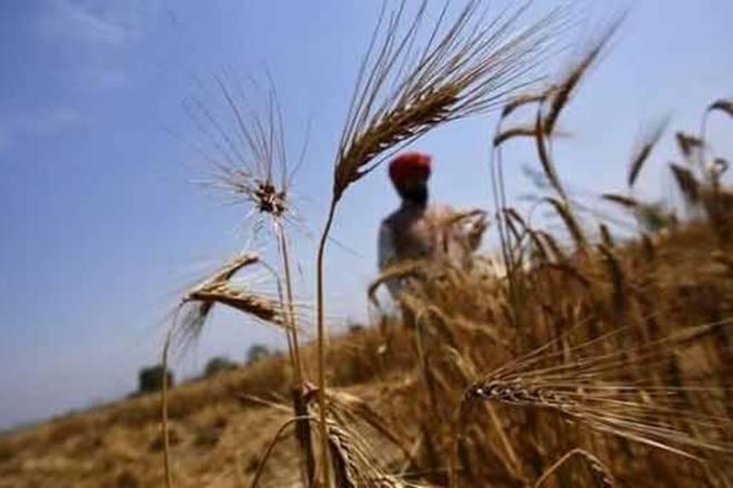 maharashtra farmers, tamil nadu, gst, goods and services, gst news, gst latest news