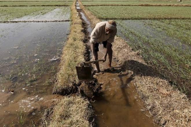 maharashtra, maharashtra farm crisis, farmers market, maharashtra farmers, india, india news