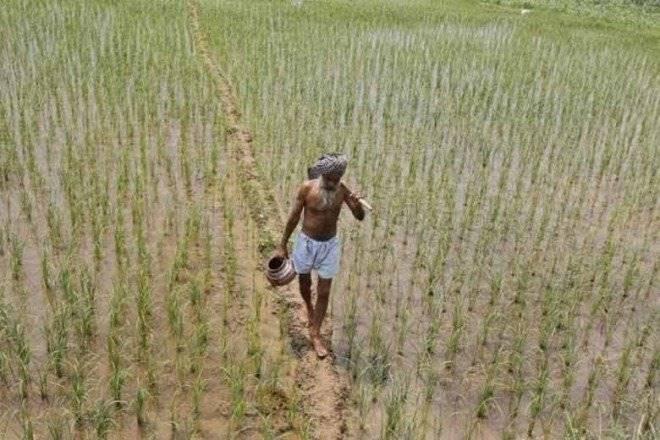Punjab, agriculture, GST, green revolution