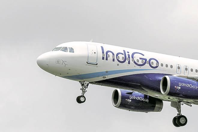 IndiGo, indigo kochi onam offers, indigo kochi, kochi onam special flights, kochi onam flights indigo, indigo flights