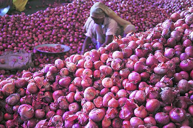 onion, onion news, onion latest news, lasalgaon onion purchase, onion export, onion import, nafed, National Agricultural Cooperative Marketing Federation