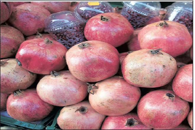 Pomegranate prices, Maharashtra Pomegranate Growers Research Association, Spain, Pomegranate  exports, pomegranate cultivation, Andhra Pradesh