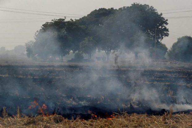 Crop residue burning, Punjab CM Amarinder Singh, Amarinder Singh