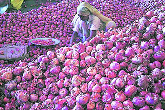 Onion prices, cap on Onion prices, government remedies on Onion prices, Maharashtra Onion prices