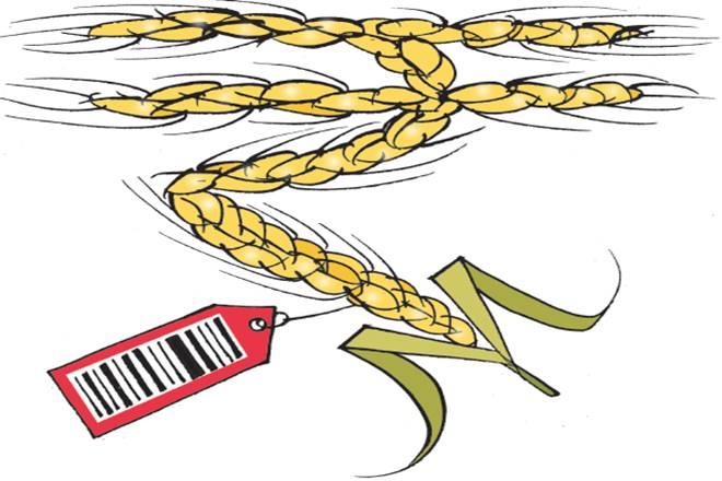 farmers incomes, Doubling farmers incomes, rabi crops