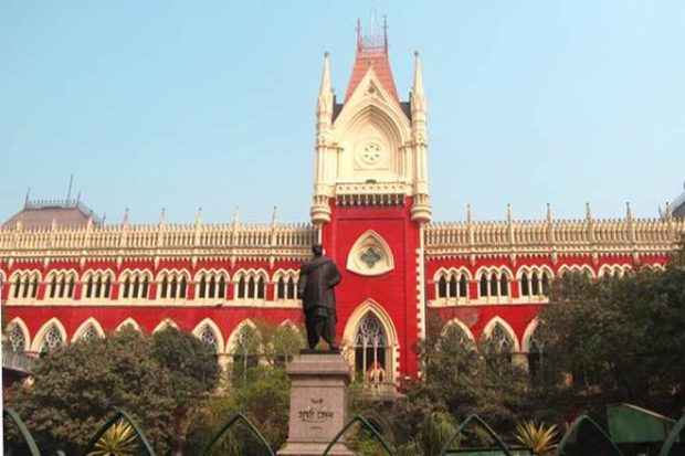 Calcutta High Court, High Court, idol immersion curbs, West Bengal government