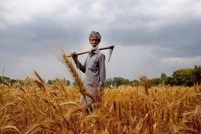 Monsoon in india, monsoon in Madhya Pradesh,farmers protest,farmers unrest, rabi crop, Kharif crop