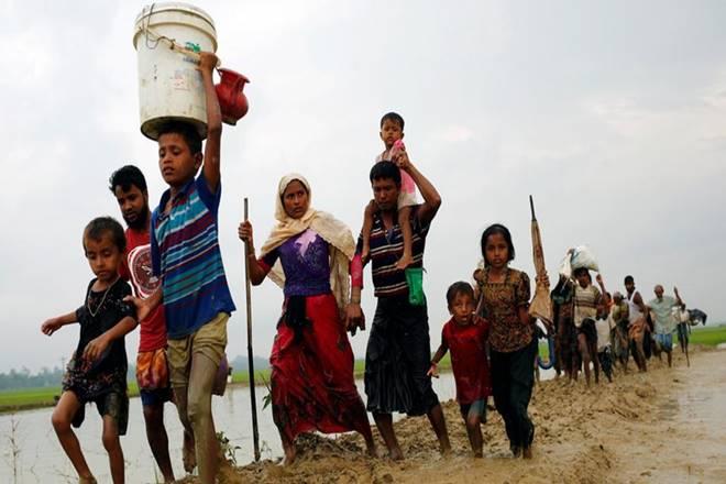 WHO,Rohingyas,Rohingyas healthcare in bangladesh cox bazar,Rohingya refugees,WHO South-East Asia,SEARHEF