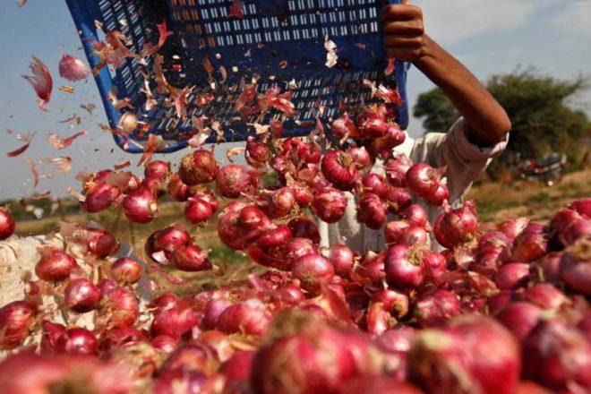 Onion farmers,APMC, prices of onions,Vashi Kanda Batata Vikreta Sangh,kharifcrop, Dilip Bankar,wholesale onion selling market
