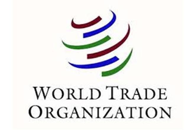 World Trade Organisation, WTO, India