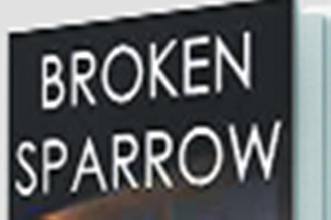 broken sparrow, rishi raj book
