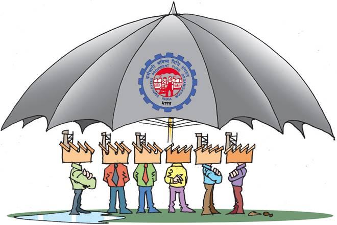 Employee Provident Fund, EPF, EPF member, jobs creation,Employees' Provident Fund Organisation, EPFO