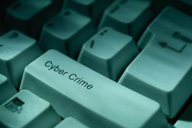 Cyber crime, US, poll