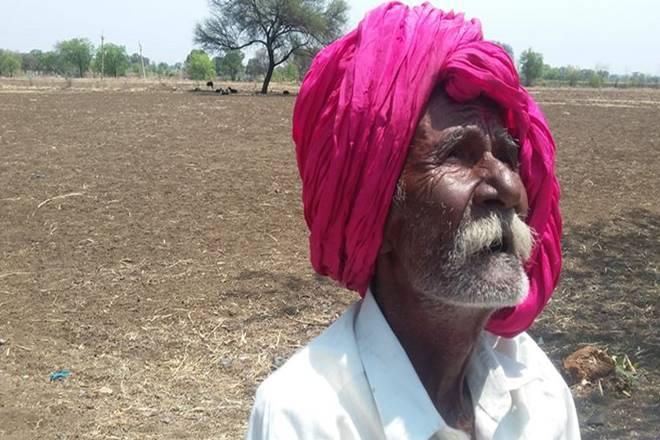 Vidarbha farmers,Nitin Gadkari,Marathwada farmers,NDDB ,Devendra Fadnavis,Maharashtra Bamboo Development Board ,irrigation, cotton crop