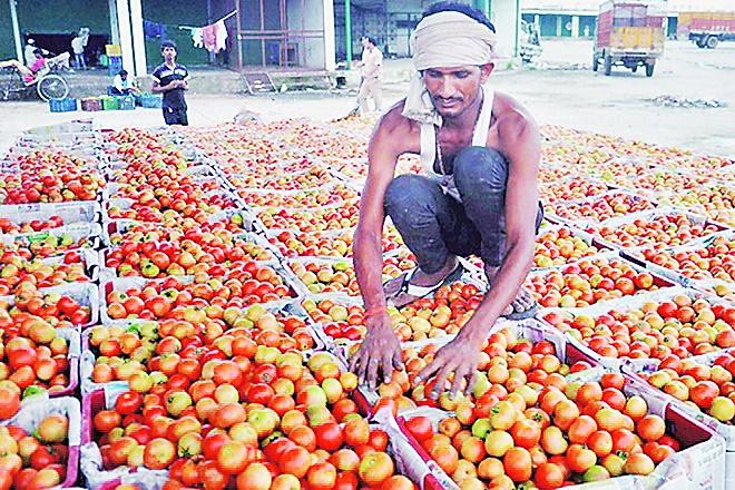 West Bengal, AMPC, e-mandi, eNAM, Niti Aayog, Bharat Chamber of Commerce, agriculture produce, Radha Mohan Singh