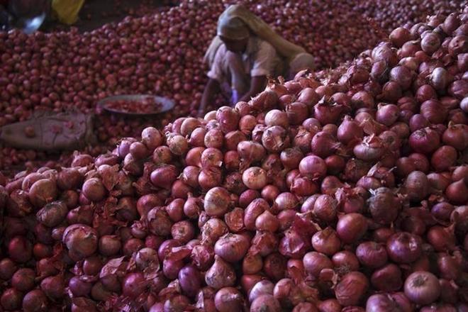onion, onion price, dehydrated onions,onion powder, onuion price surge