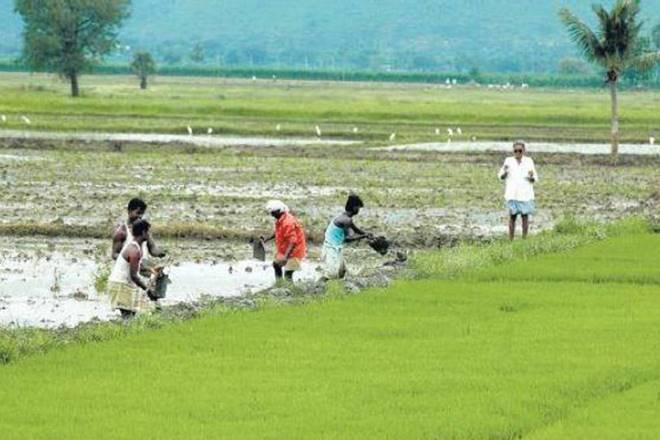 Yogi Adityanath,Yogi Adityanath plans,farmers income ,farmers income 2022